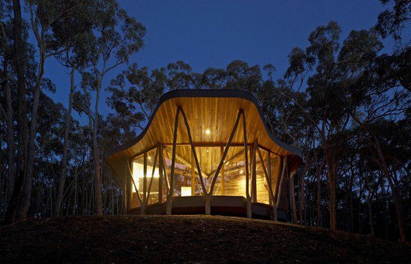 The Trunk House - Paul Morgan Architects