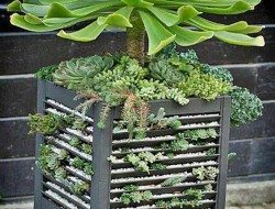 One of our fans – Tresia – sent us a message requesting a simple idea on how to build a planter out of old window shutters. It took a while, but we found one :-)  What do you think?