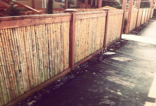 Fences – sustainable, durable and beautiful