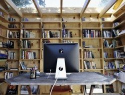 tThe Hackney Shed Office - Sian Architecture