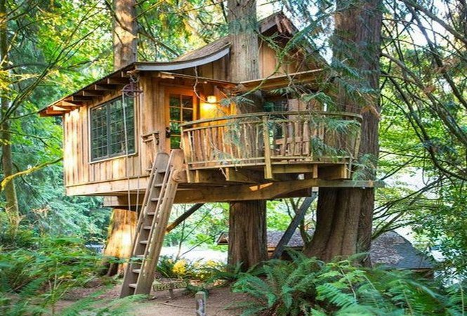 Tree Houses for the child within…