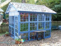 Need a glasshouse but don't have the budget? Then this glasshouse made from repurposed windows could be for you.