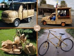 Here are four examples showing the versatility of bamboo. Got a favourite?