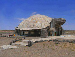Shell we Live in a Turtle House By Fishgirl