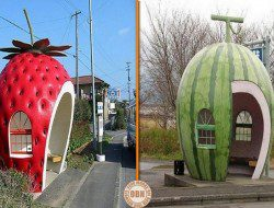 Fruity bus stops :) Thumbs up?