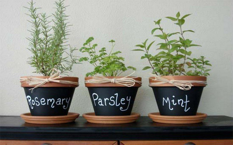 Container herb gardens and other herb garden ideas