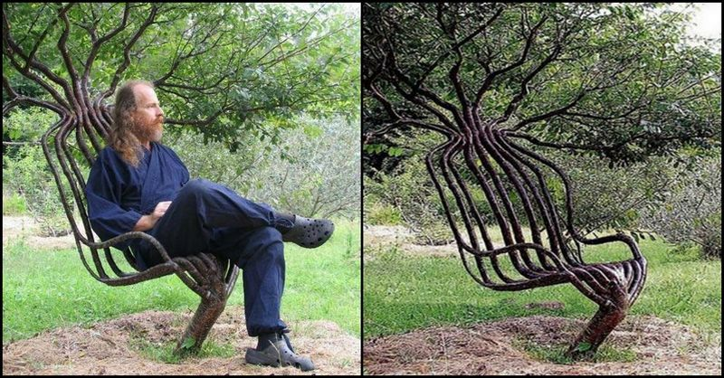 Pooktre Tree Chair