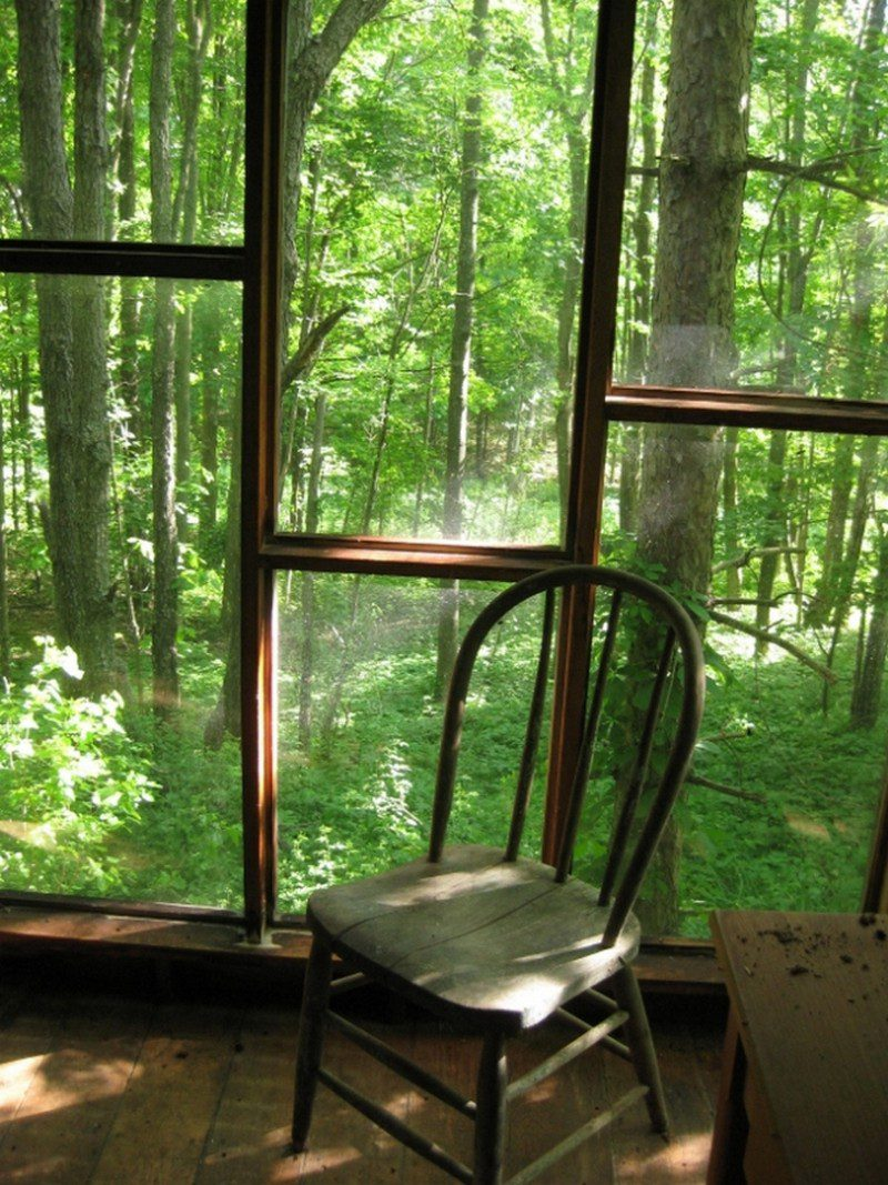 A wall of windows; a view of writers' heaven...