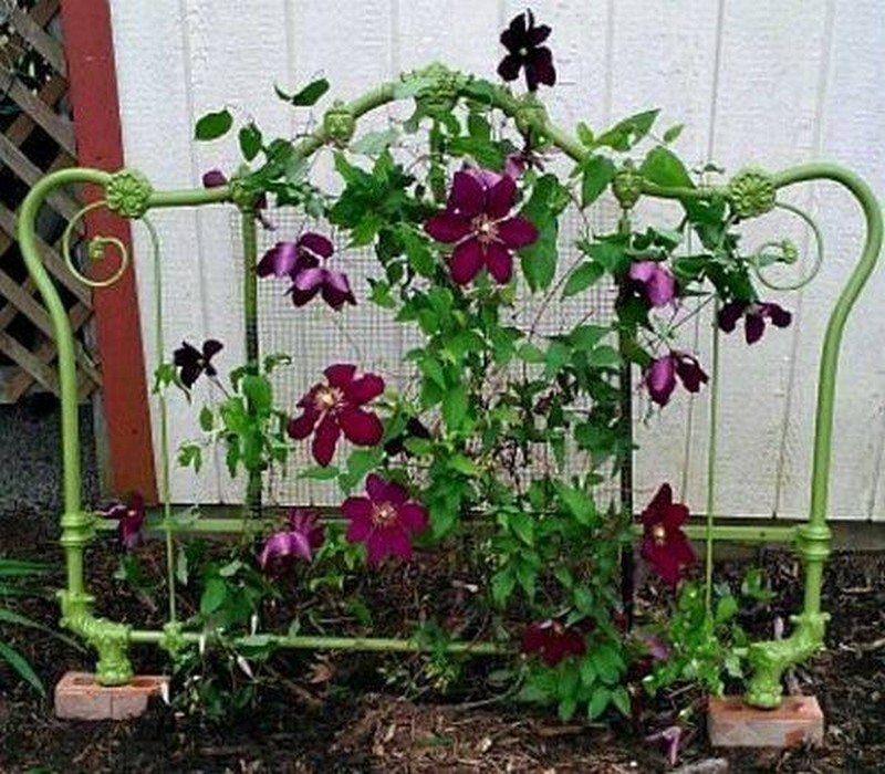 Trellis made from old headboard.