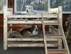 Dog Bunk Bed