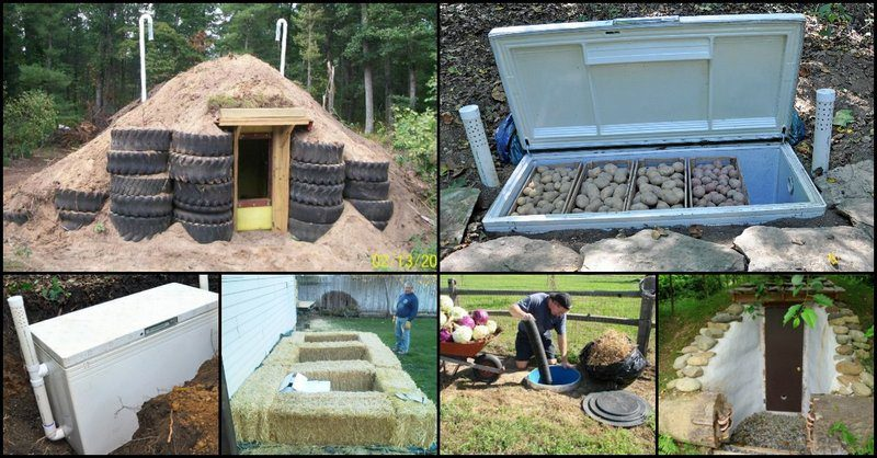 Root Cellar Ideas