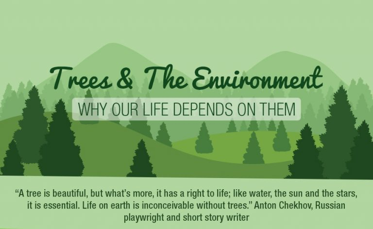 Trees, the environment and the simple art of breathing…