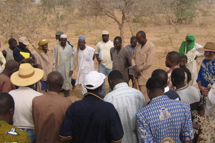 Today, farmers in Niger are growing an additional 500,000 tons of grain every year without external aid.